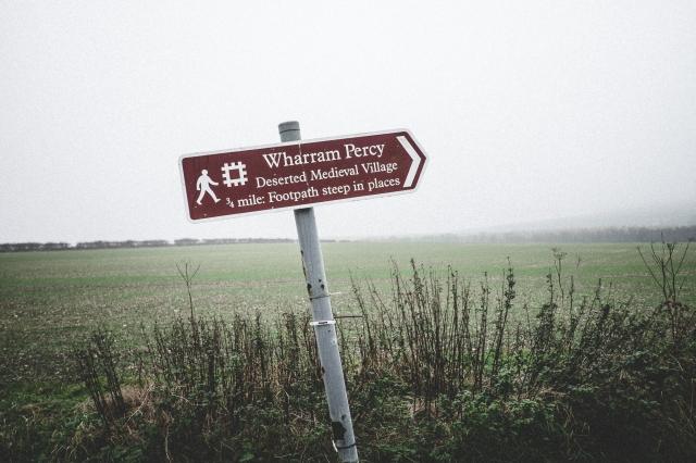 Wharram Percy-5186