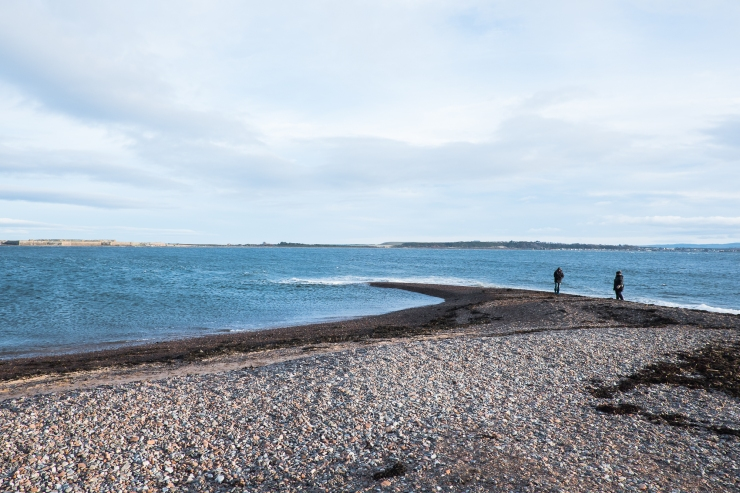fortrose-walking-maisy-5