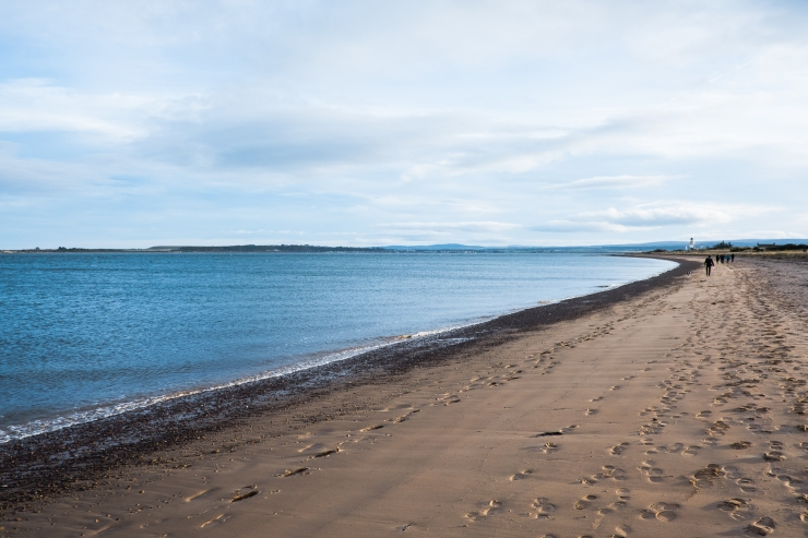 fortrose-walking-maisy-8