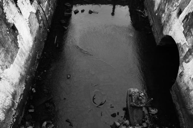 Govan Graving Docks-20