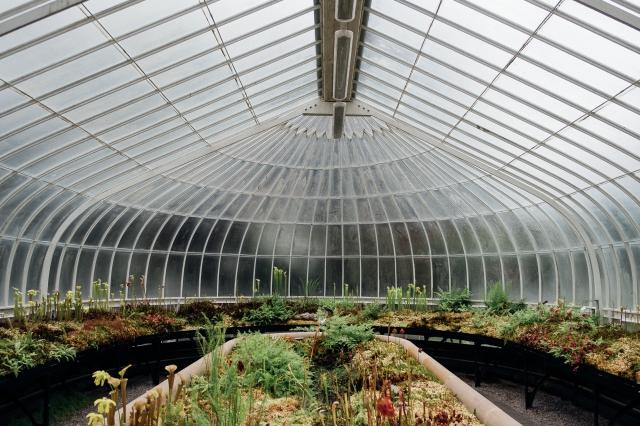 Katy, Botanic Gardens-5