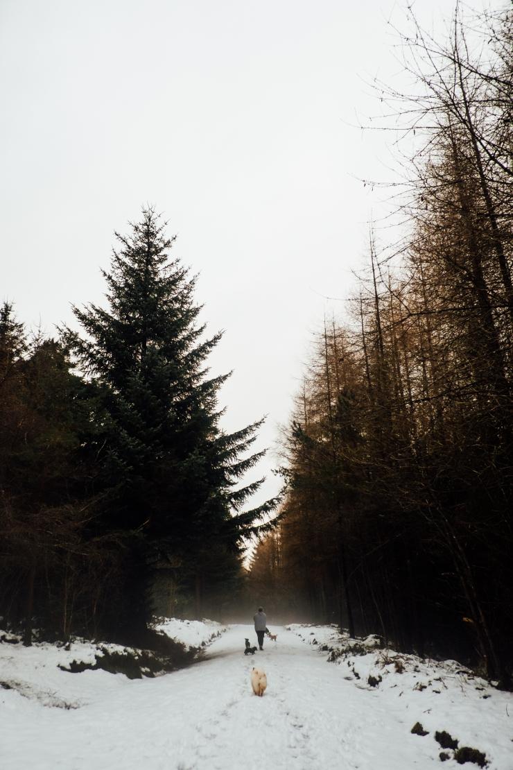 Robyn, Dalby Forest-53