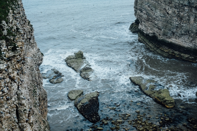 Flamborough-17