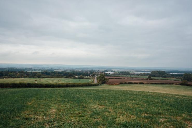 JAZZebell_, Field-1
