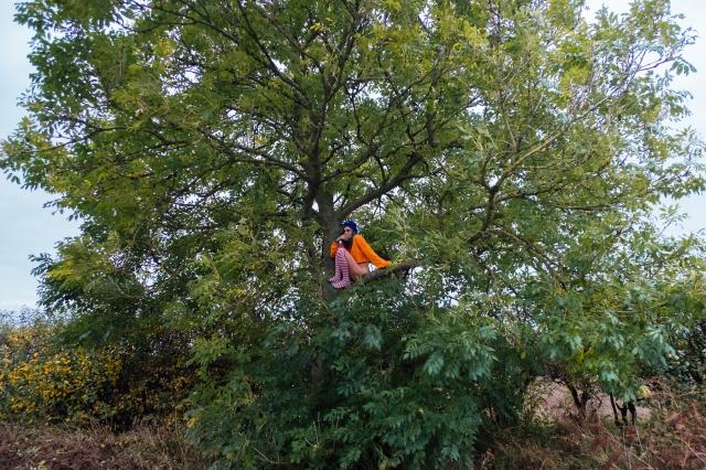JAZZebell_, Tree-20